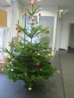 Weihnachtsbaum im DGB Haus